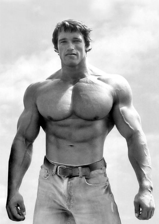 Arnold Schwarzenegger Bodybuilding Photo Poster Wall Print