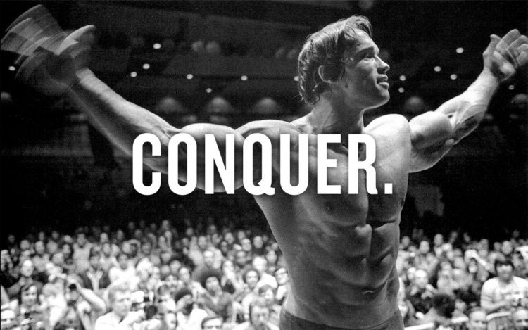 #27 Arnold Schwarzenegger Poster Fitness Muscle Gym 40x60 inch More Size Large